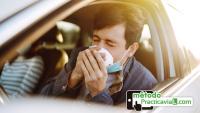 Consejos conducir con alergia chico estornudando en el interior de un vehículo