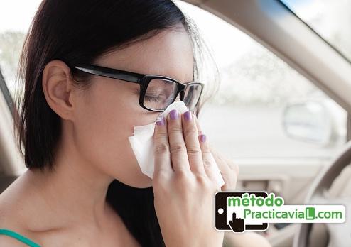 Conducir alergia consejos